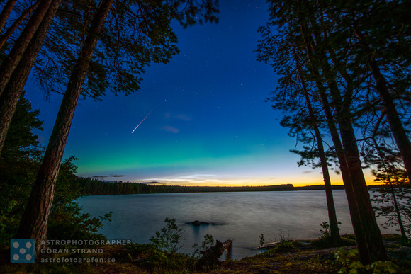 Perseid, Aurora and NLC