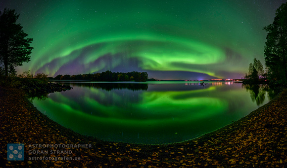 Autumn Northern Lights